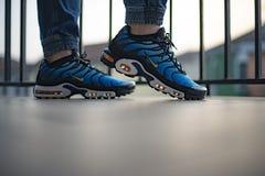 Nike Air Max Plus TN Hyperblue royaltyfri bild