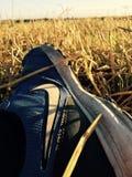 Nike Shoes Royaltyfri Foto