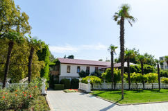 Nikita Botanical Garden La Crimea, Jalta Immagini Stock Libere da Diritti