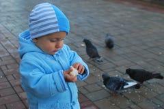 Nikita feeding doves. Nikita walking in park and feeding doves, Donetsk, Ukraine Royalty Free Stock Photos
