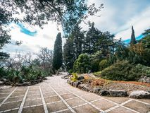 Nikitsky Botanical Garden, beautiful green park with different trees, plants and pathways for walking, decorative gardening royalty free stock photos