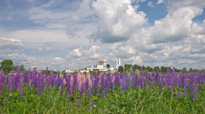 Nikitsky Orthodox monastery and lupines Royalty Free Stock Photos
