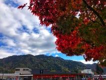 Nikko, Япония стоковые изображения rf