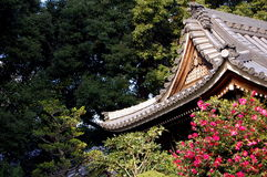 Nikko. Temple in the trees.nikko,japan Royalty Free Stock Image