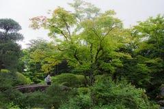 Nikko, Japão - 23 de julho de 2017 fotos de stock royalty free