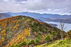 Nikko Nationaal Bos in Japan stock afbeeldingen