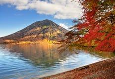 Nikko Nationaal Bos in Japan stock foto's