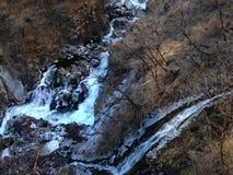 Nikko regnnedgång Royaltyfri Fotografi