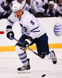 Niklas Hagman, Τορόντο Maple Leafs μπροστινοί στοκ εικόνες