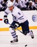 Niklas Hagman, voorwaartse Toronto Maple Leafs Stock Foto