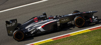 Niko Hulkenberg Sauber Royalty Free Stock Images