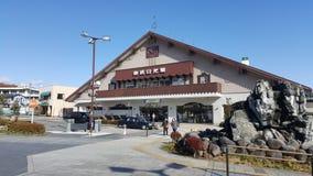 Niko, Japan - November 2016: Nikko ist eine Stadt am Eingang zu Nationalpark Nikko, das meiste berühmte für Toshogu, Japans höchs lizenzfreies stockfoto