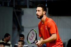 Nikola Milojevic som spelar i matchen mot USA, Davis Cup 2018, Nis, Serbien Fotografering för Bildbyråer