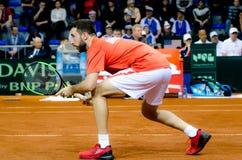 Nikola Milojevic som spelar i matchen mot USA, Davis Cup 2018, Nis, Serbien Arkivbild