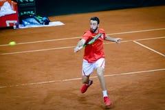 Nikola Milojevic som spelar i matchen mot USA, Davis Cup 2018, Nis, Serbien Royaltyfri Fotografi
