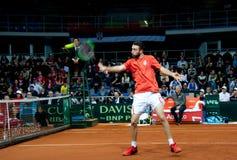 Nikola Milojevic som spelar i matchen mot USA, Davis Cup 2018, Nis, Serbien Royaltyfria Foton