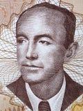 Nikola Sop um retrato fotografia de stock royalty free