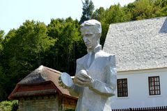 Nikola Tesla royaltyfria foton