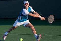 Nikolay Davydenko at the 2010 BNP Paribas Open Stock Photo