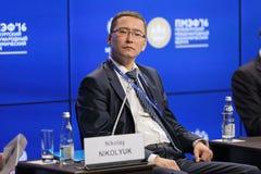 Nikolay Nikolyuk Royalty Free Stock Photography