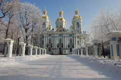 Nikolsky cathedral 3. Nikolsky cathedral. Winter. Hoarfrost. A city landscape Stock Photo