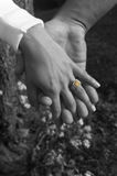 nikon руки d200 стоковая фотография rf
