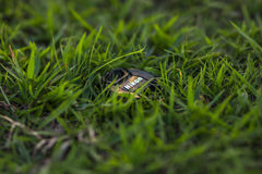 Nikon konst Royaltyfria Bilder