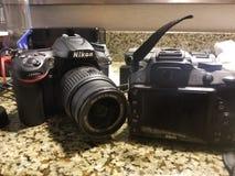 Nikon novo contra o nikon velho fotografia de stock