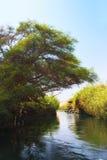 Nil-Landschaft Lizenzfreies Stockfoto