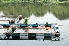 Nil tiapia gospodarstwa rolnego ryba Obraz Stock