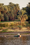Nile. The beautiful bank river Nile. Taken in Aswan, Egypt stock images