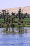 Nile and desert of Egypt Stock Photography