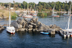 Nile feluccas. Feluccas at the banks of  Nile river in Aswan, Egypt Stock Images