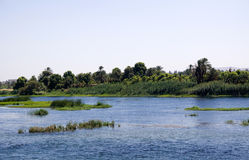 Nile nature Royalty Free Stock Photo