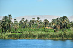 Nile river Royalty Free Stock Photography