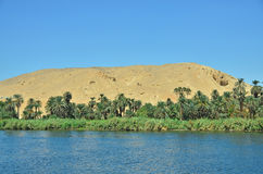 Nile river. Bank of Nile river in Egypt stock photo