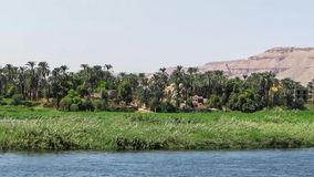 Nile River video estoque