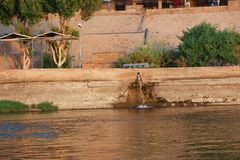 Nile River - Afrika fotografering för bildbyråer