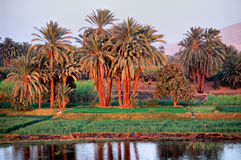 Nile River, cruise around Aswan. Sunset on Nile River, cruise around Aswan stock image