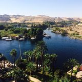 The Nile. River Egypt water trees Royalty Free Stock Images