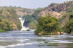 Nile river at Murchison Falls National Park, Uganda stock photos