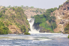 Nile River på den Murchison Falls nationalparken, Uganda arkivbilder