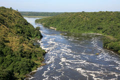 The Nile River, Uganda, Africa. The River Nile, Murchison Falls National Park Safari Reserve in Uganda - The Pearl of Africa Royalty Free Stock Images