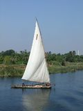Nile scenery with felucca. A felucca on the Nile in Egypt Royalty Free Stock Images