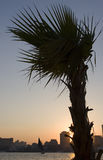 nile solnedgång Arkivfoto