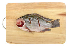 Nile Tilapia on chopping block Stock Photo