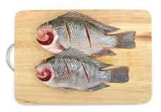 Nile Tilapia on chopping block Stock Image