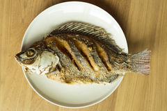 Nile tilapia or Oreochromis niloticus  fried on dish Royalty Free Stock Photography