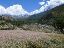 Nilgiri from Kali Gandaki river valley, Nepal Stock Photo