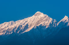 Nilgiri- a montanha azul fotografia de stock royalty free